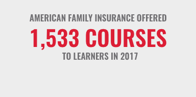 AmFam Courses offered in 2017